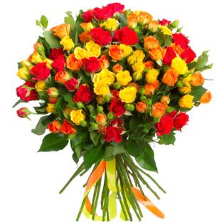 Розы Кустовые микс 4